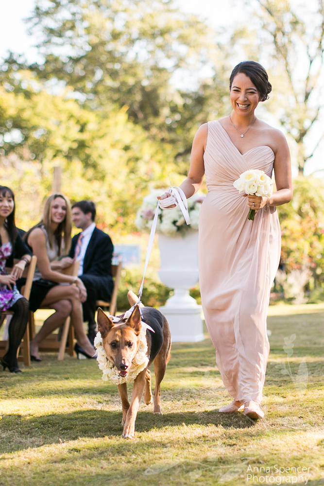 Bridesmaid with Flower Dog