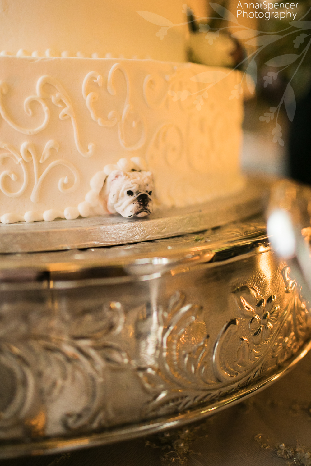 UGA bulldog hidden in brides wedding cake