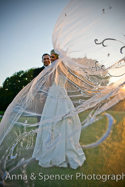 Wedding Veil Closeup