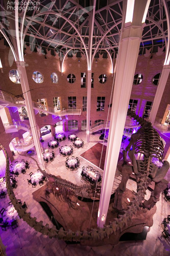 Fernbank Museum Of Natural History Wedding