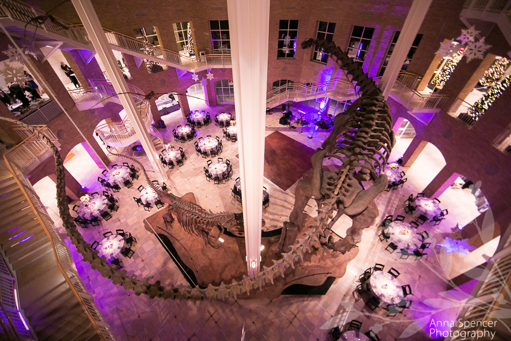 Wedding Reception At Fernbank Museum In Atlanta